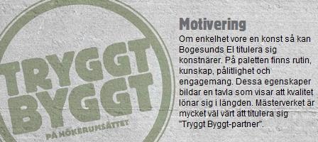 Bogesund El & Tele AB 2012-12-20